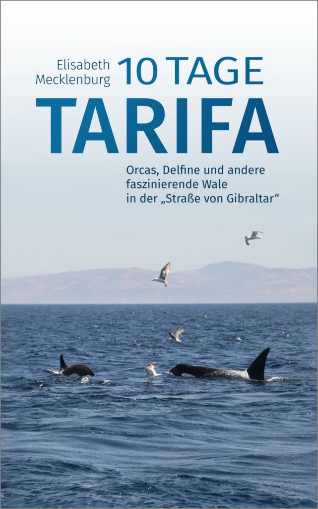 10 Tage Tarifa